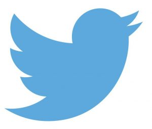 twitter icon (blue bird)