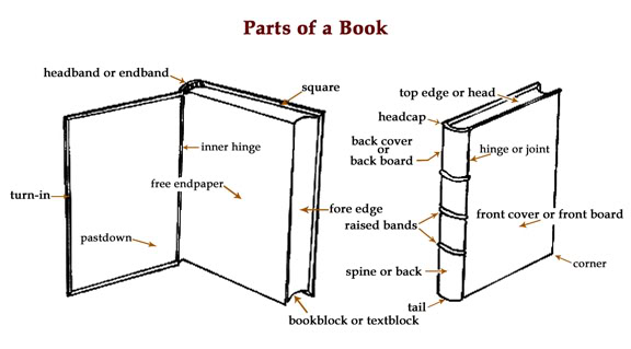 Parts of a book displayed